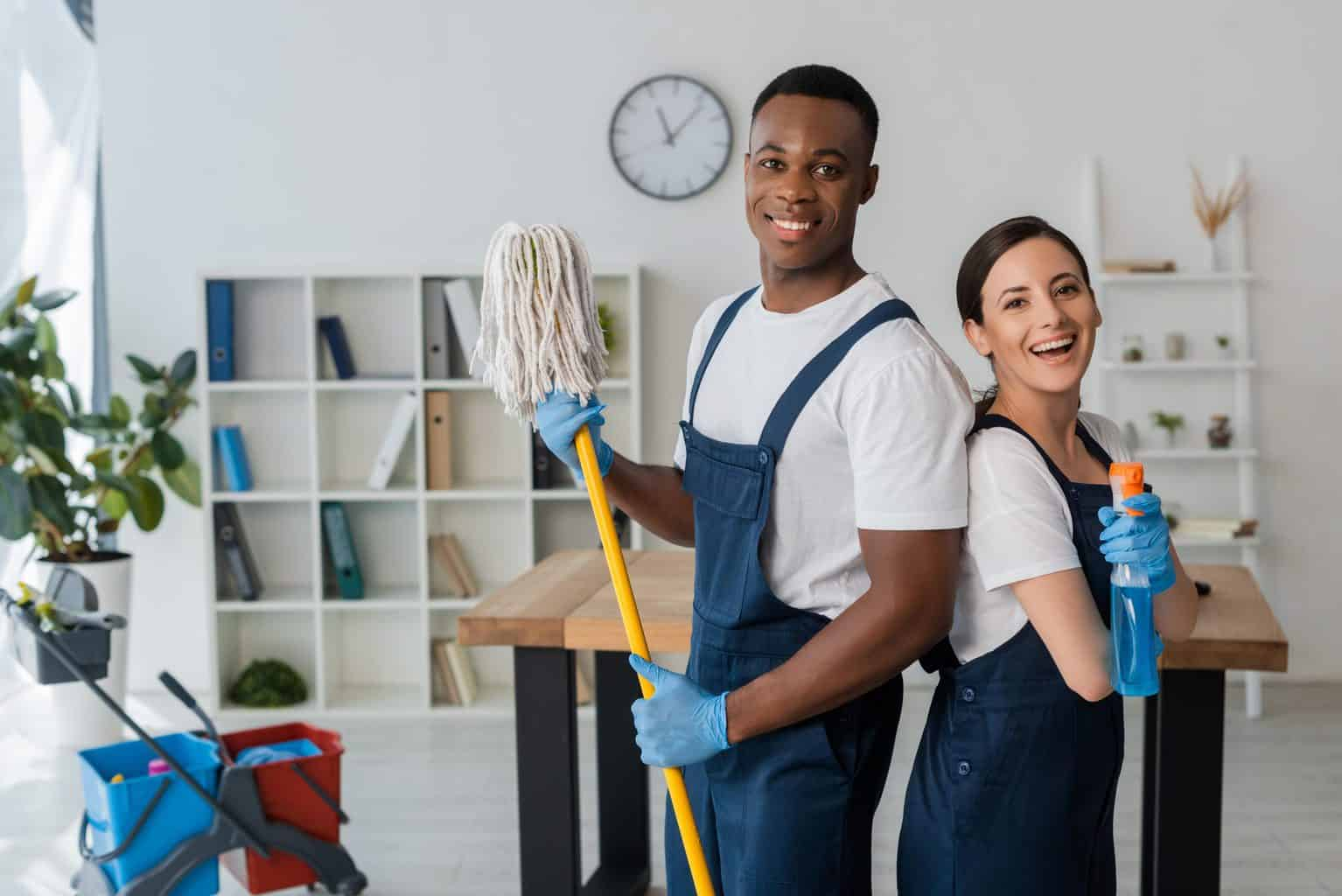 Tidy Review – Our Experience [House Cleaning Service App]